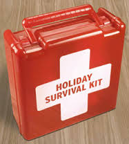Holiday survival kit (looks like a first-aid kit)