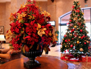 Poinsettia bouqet with Christmas tree in background