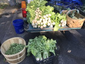 Truck bed with various fresh vegetables displayed