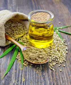 Hemp oil, hemp seeds, hemp leaf and hemp powder