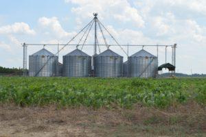 Grain bins in field