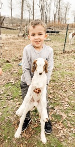 Little boy holding baby goat