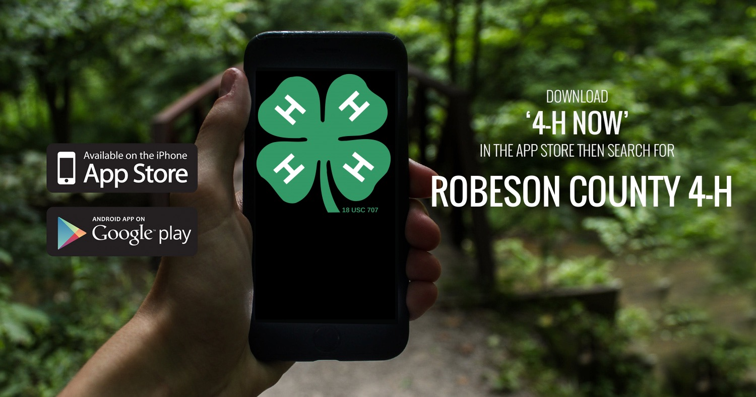 """Phone with 4-H logo on screen and """"Download 4-H Now App"""""""