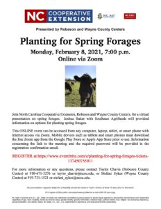 Cover photo for Planting for Spring Forages