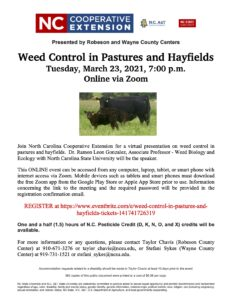Cover photo for Weed Control in Pastures and Hayfields