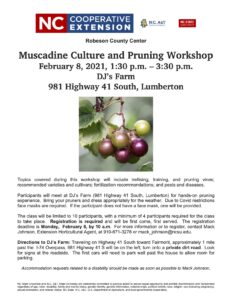 Flyer for Muscadine